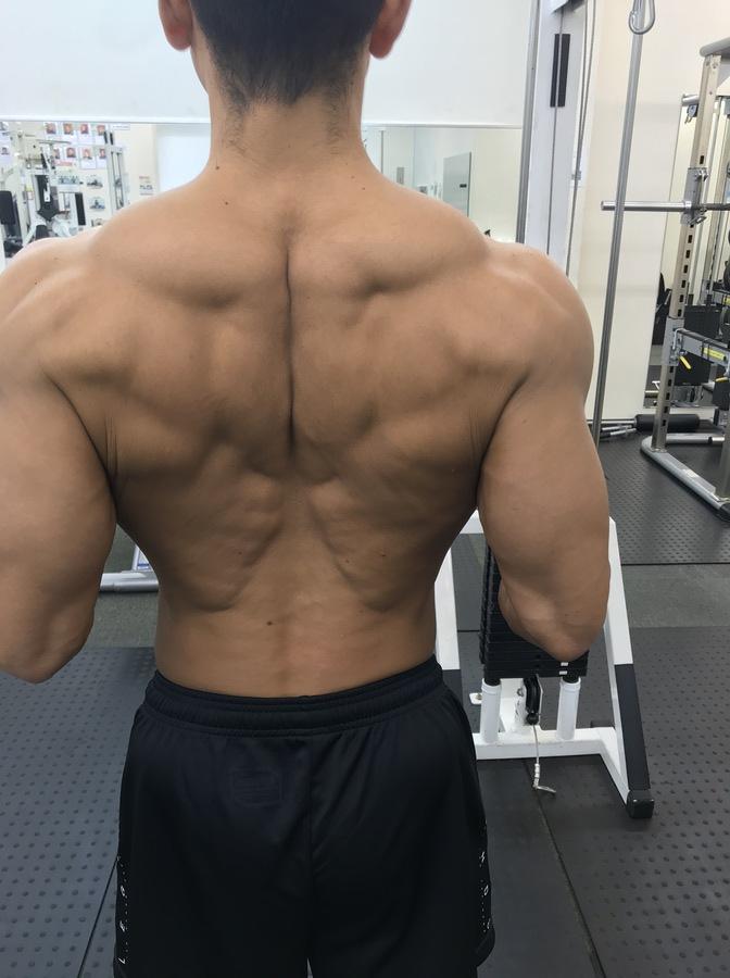 胸 筋 大 トレ 下部 筋