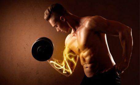 トレーニング 筋肉 落ちる マッスルメモリー